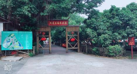 深圳九龍生態園親子DIY一日游